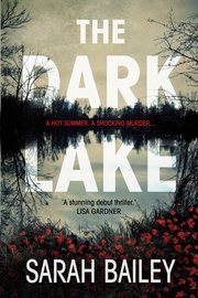 Cover Image for The Dark Lake
