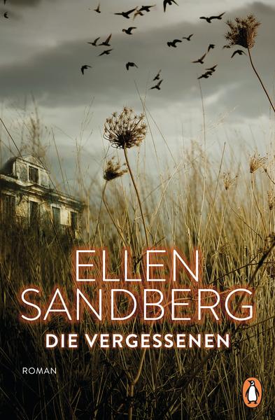 Cover für Die Vergessenen